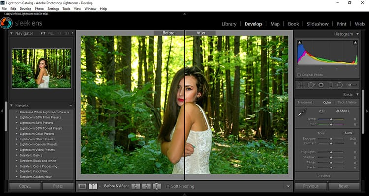How To Apply Selective Adjustments In Lightroom
