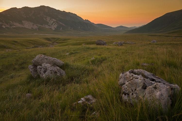 Landscape by Daniel Zedda