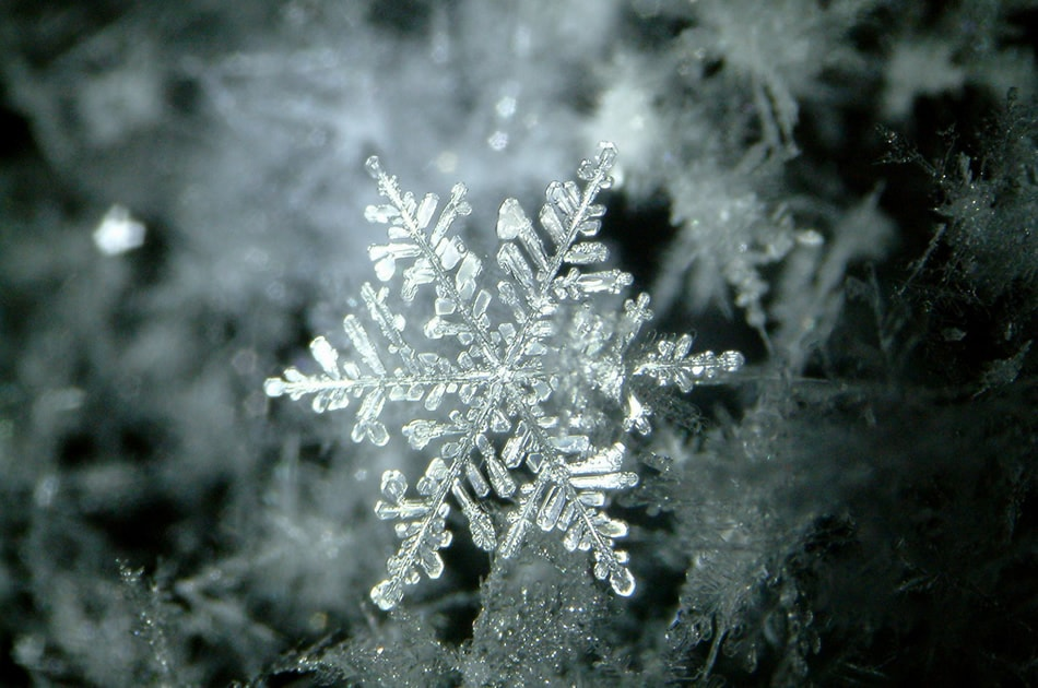 Snowflake-029