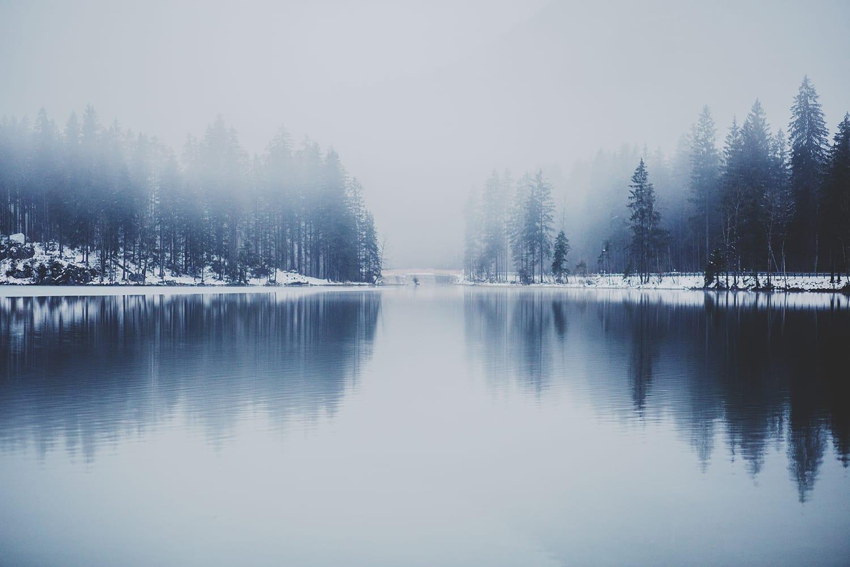 Capturing Amazing Photos of Mist and Fog