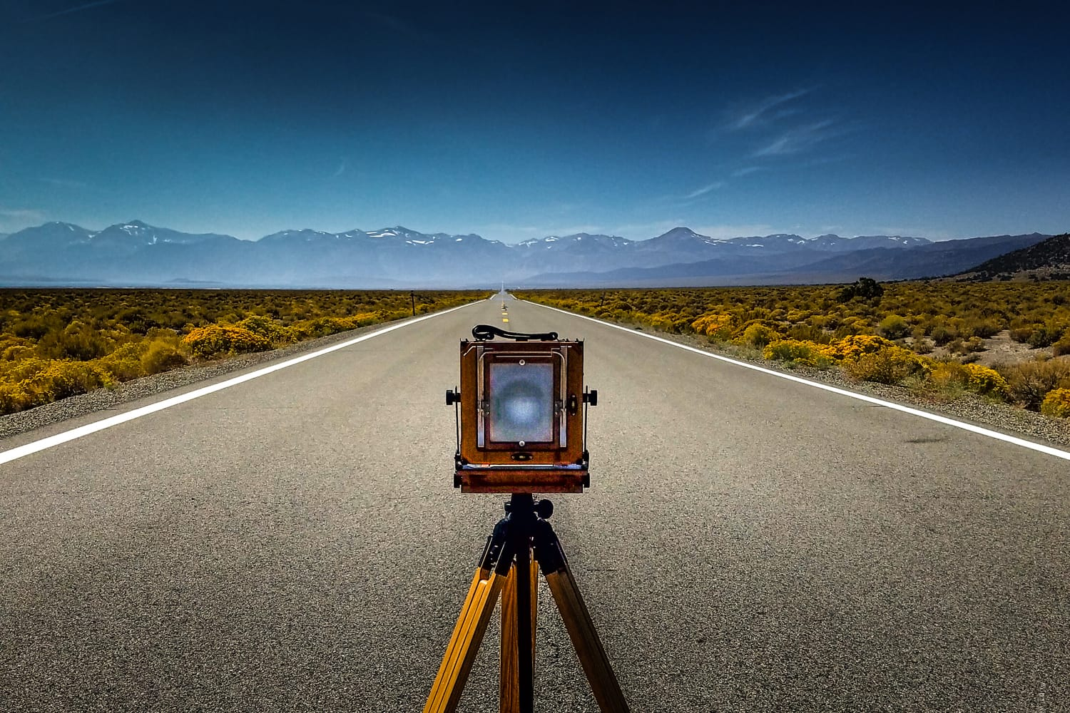 A Crash Course in Large Format Film Photography