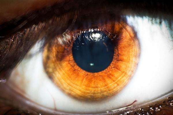 Saras Eye