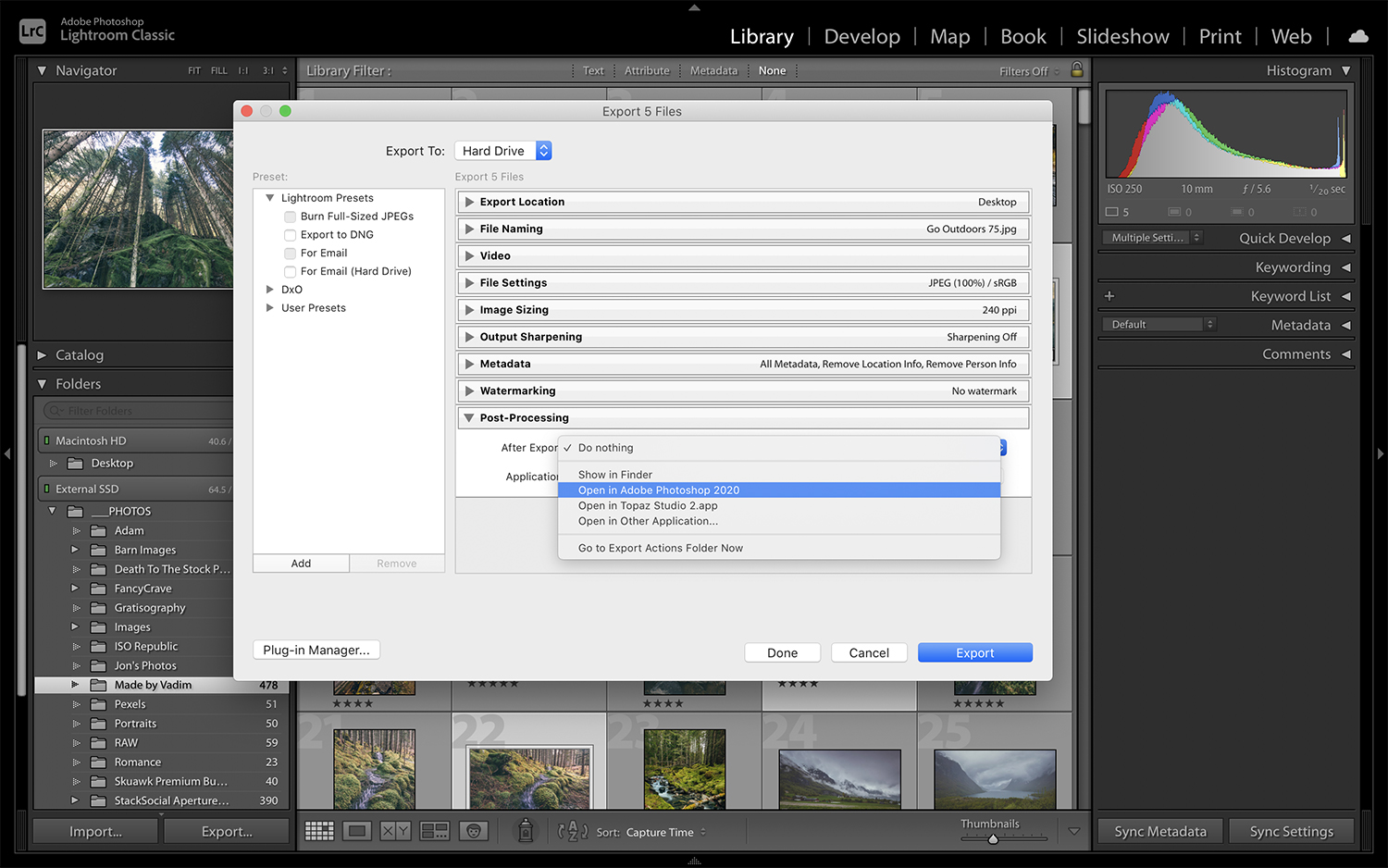 Everything You Need to Know About Exporting Images from Lightroom Classic