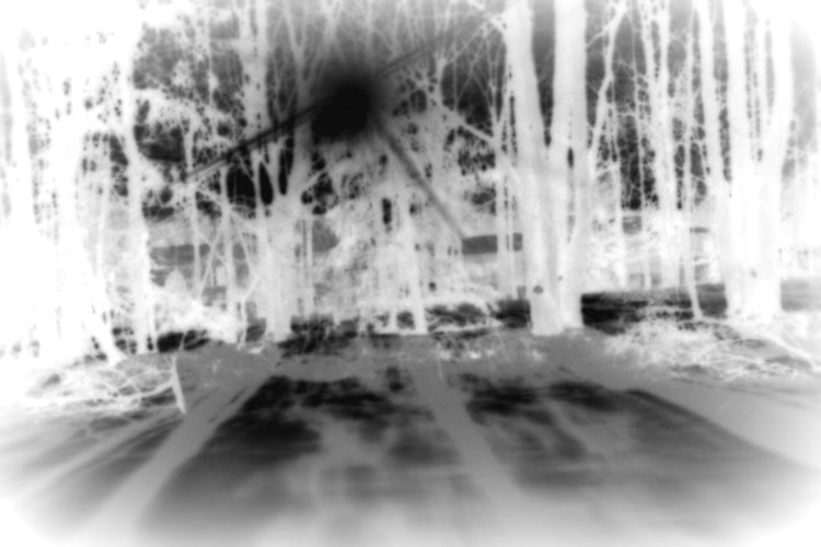 Pinhole Camera Results