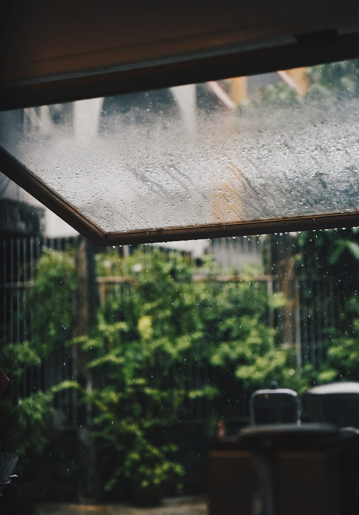 Helpful Tips & Tricks for Successfully Taking Photos in the Rain