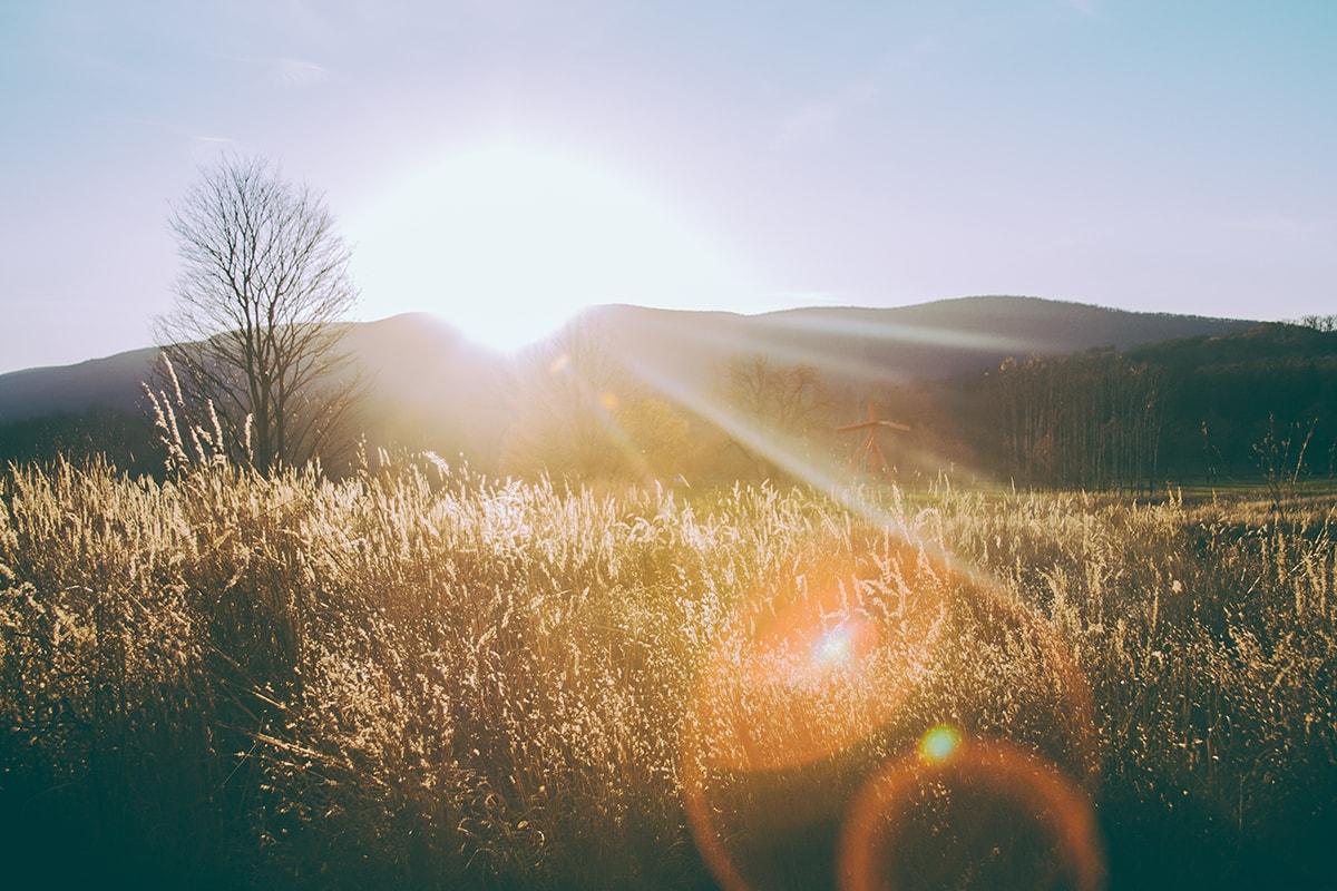 Midday Sun