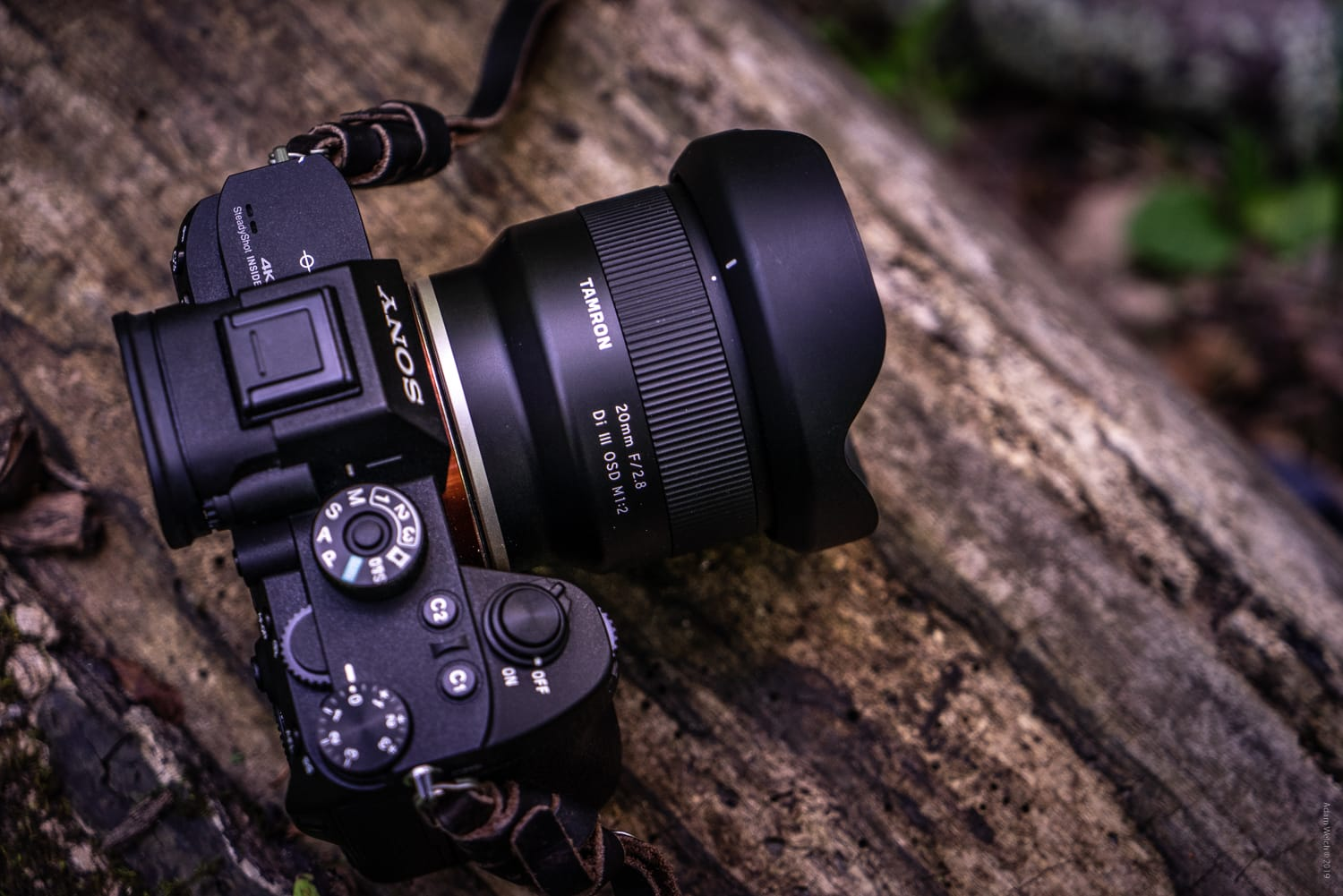 Hands-On Review of the Tamron 20mm f/2.8 Di III OSD M1:2 for Sony FE-Mount
